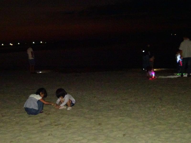 「ウミホタルウオッチング」 in  せんなん里海公園潮騒ビバレー前砂浜_c0108460_22463374.jpg