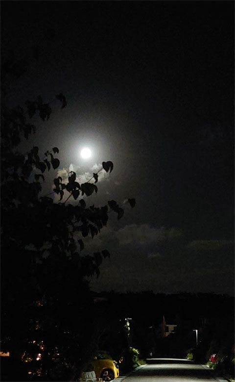 お月見_a0342172_21130166.jpg