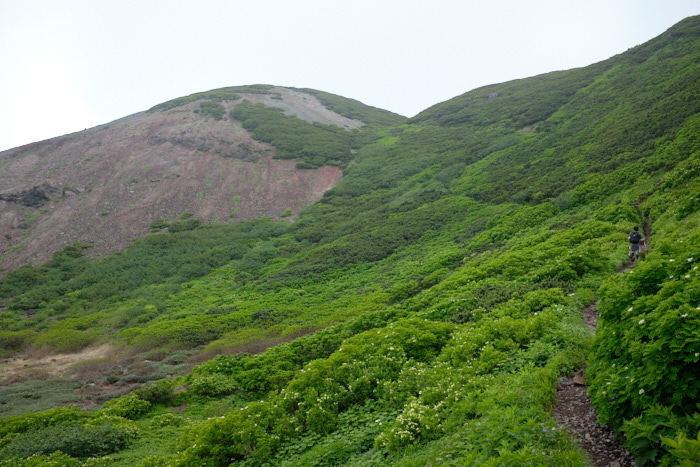 北海道11日目-1 羊蹄山登山_b0339488_04440266.jpg