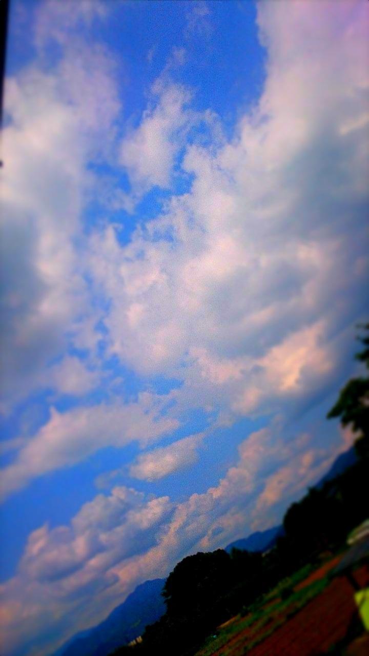 空(9月14日)_d0132289_12000932.jpg