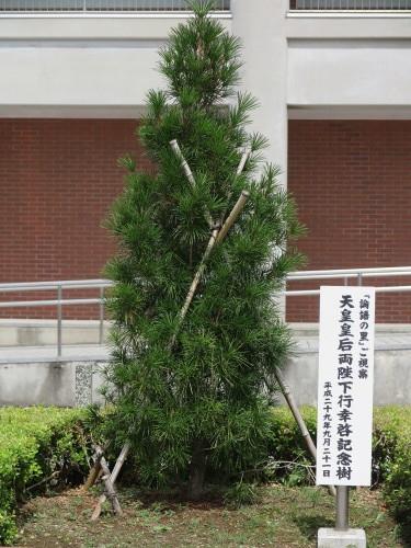令和×渋沢栄一・日本型経営の源流を探る・1_c0075701_15432166.jpg