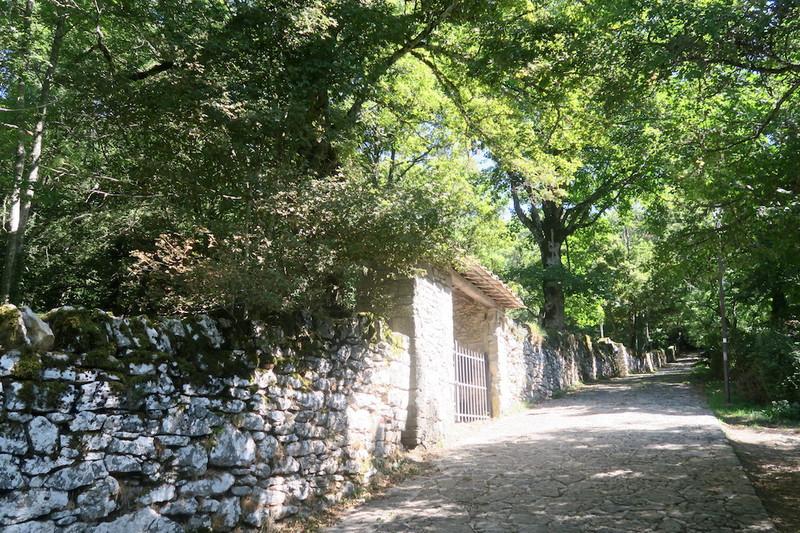 ラヴェルナの緑の森にも秋の足音_f0234936_625269.jpg