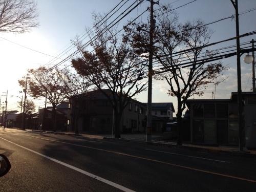 妄想自転車_b0307951_00371819.jpg