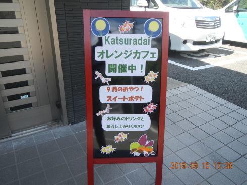 オレンジカフェ!_d0178056_17245389.jpg