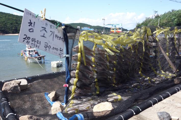小舞衣島(ソムイド 소무의도)への行き方 仁川空港から磁気浮上鉄道(リニアモーターカー 자기부상철도)とバスに乗って舞衣島(ムイド 무의도)と小舞衣島(ソムイド 소무의도)へ行ってきました_f0117059_20200278.jpg