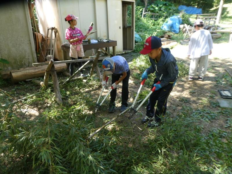 和歌山市から岬社協企画「里山体験」に来訪・・・孝子の森_c0108460_17245060.jpg