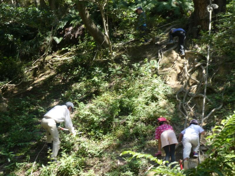 和歌山市から岬社協企画「里山体験」に来訪・・・孝子の森_c0108460_17260062.jpg