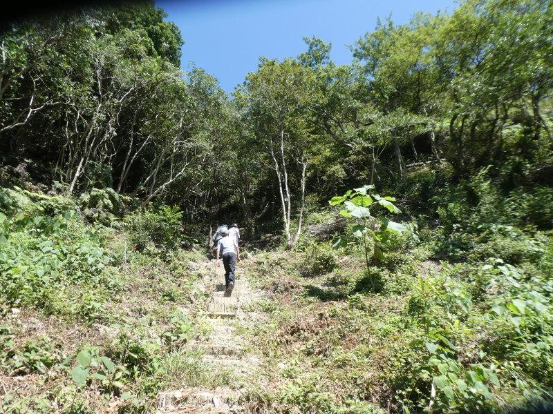 和歌山市から岬社協企画「里山体験」に来訪・・・孝子の森_c0108460_17273913.jpg