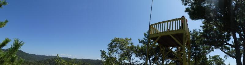 和歌山市から岬社協企画「里山体験」に来訪・・・孝子の森_c0108460_17293436.jpg