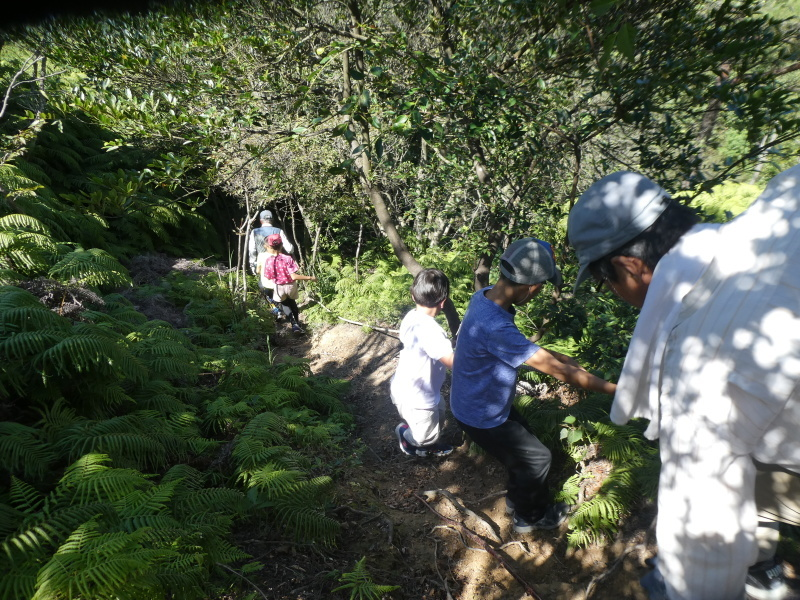 和歌山市から岬社協企画「里山体験」に来訪・・・孝子の森_c0108460_17315519.jpg