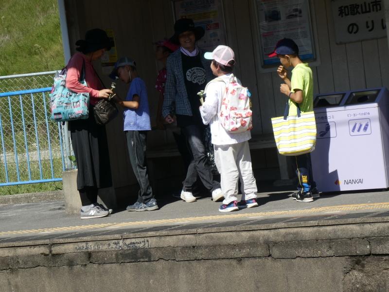 和歌山市から岬社協企画「里山体験」に来訪・・・孝子の森_c0108460_17340995.jpg