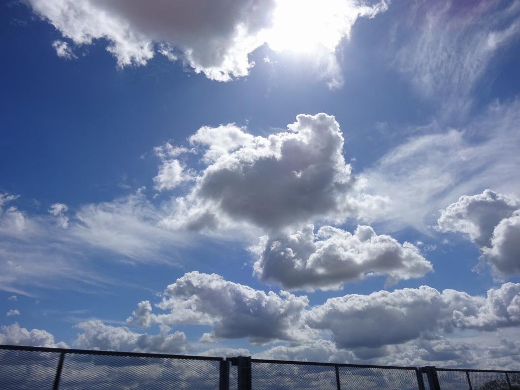 新潟 4 【9/12 厚い雲、田園、寺泊~日本海~帰路】_d0061678_11104479.jpg