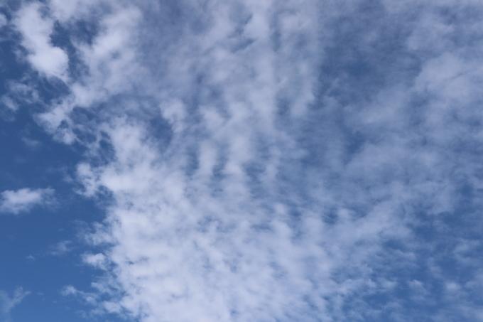 秋風を羽織る   196_b0239402_17191104.jpg