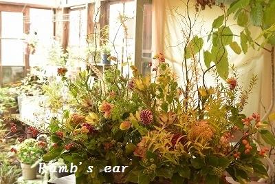 和室の床の間に飾るお花_e0128909_00213395.jpg