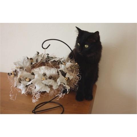 * 10月の flower room*_a0161718_20252912.jpeg