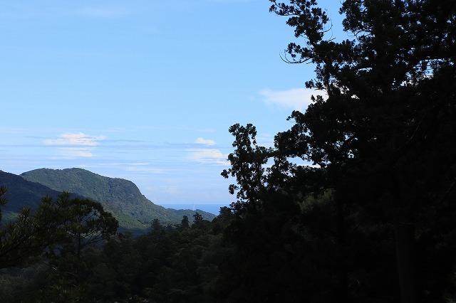 那智の滝散策(その2)(撮影:9月2日)_e0321325_14233443.jpg