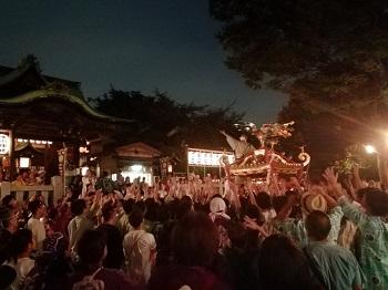氷川神社例大祭_a0061057_116135.jpg