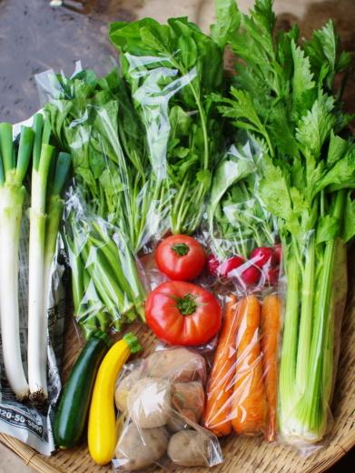 今週の野菜セット(9/17~9/21着)_c0110869_15302666.jpg