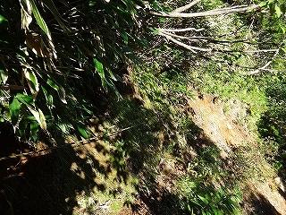 旧歩荷道から西穂高岳_e0064783_19400920.jpg