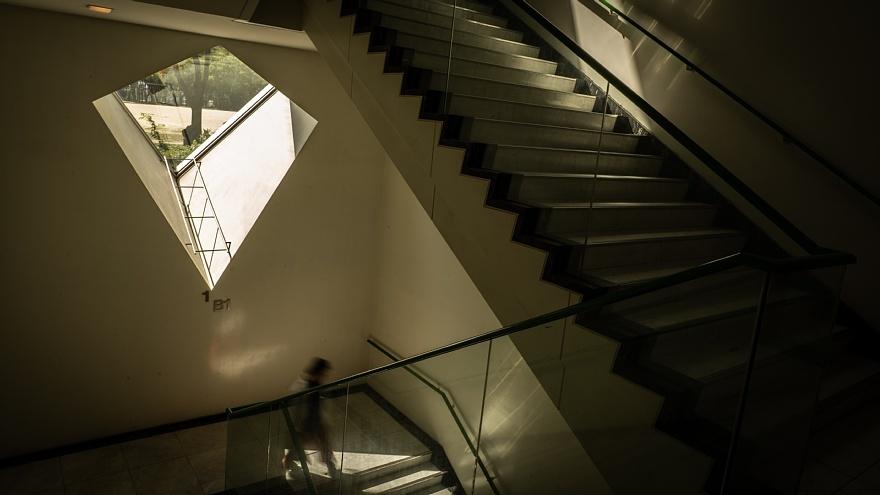 晩夏の美術館に潜む光蜥蜴_d0353489_20530780.jpg