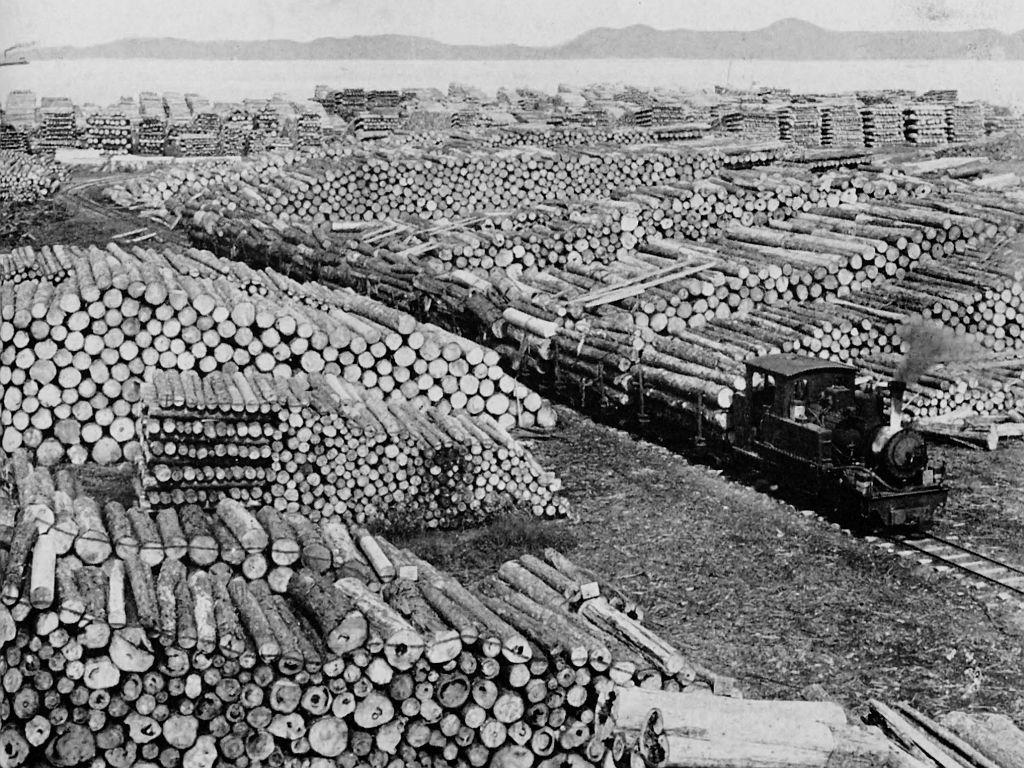 営林署と「自然災害」 : ゆさをぢさんの「されがまね話」