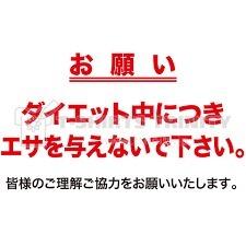b0127002_17535431.jpg