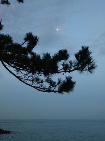 日の出の前の朝RUN_c0195909_18551640.jpg