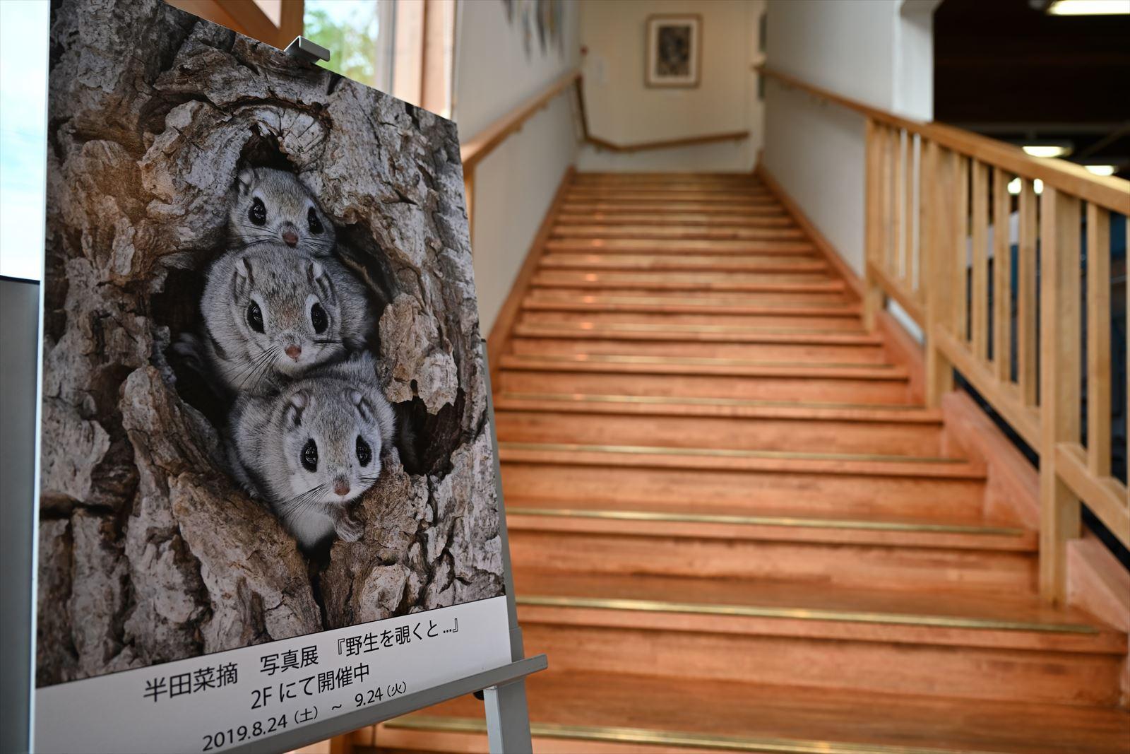半田菜摘写真展 at モンベル大雪ひがしかわ店 + 映画『 フリーソロ 』 + 『 五穀 』_a0145819_14325373.jpg