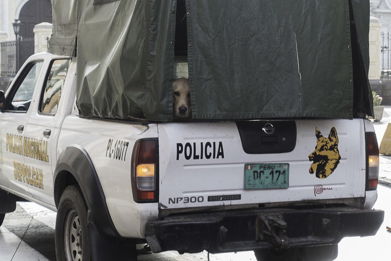 リマの観光、そして帰国の途へ ~ペルー・リマ~_b0322723_21105319.jpg
