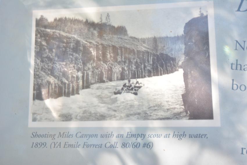ヤムナスカ流のホワイトホース市内観光 ディスカバー・ホワイトホース_d0112928_07195618.jpg