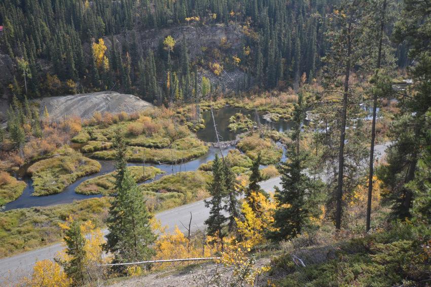 秋のホワイトホース 黄葉ハンティング!_d0112928_07353688.jpg