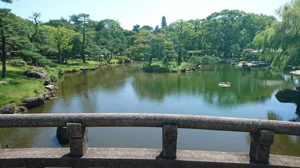 鶴舞公園 「散策編」_f0373339_07483883.jpg