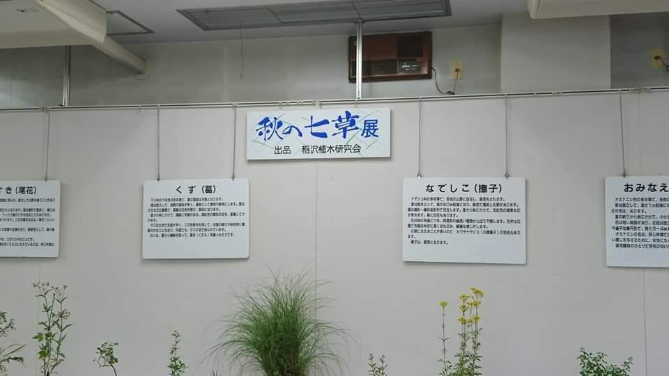 鶴舞公園 「散策編」_f0373339_07524068.jpg