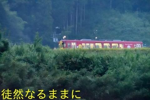 沈下橋と鉄道ホビートレイン(JR予土線)_d0285540_19502716.jpg