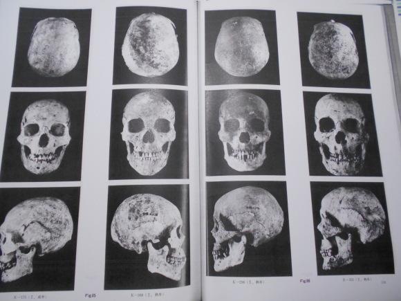 「甕棺の人骨は渡来人説」とは、邪馬台国九州説の否定なのか_a0237545_09154511.jpg