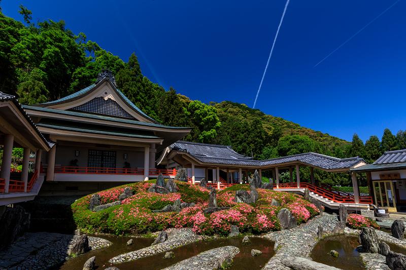 サツキ咲く曲水の庭(松尾大社)_f0155048_0111461.jpg