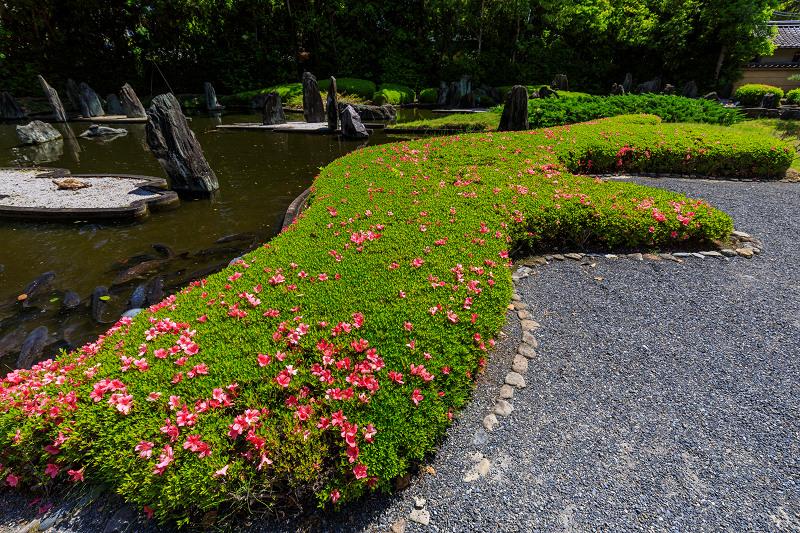 サツキ咲く曲水の庭(松尾大社)_f0155048_0121690.jpg