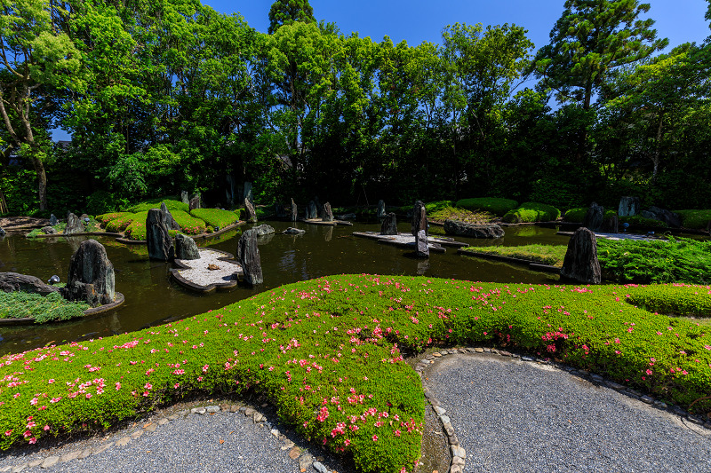 サツキ咲く曲水の庭(松尾大社)_f0155048_012448.jpg