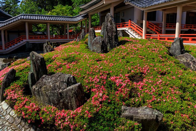 サツキ咲く曲水の庭(松尾大社)_f0155048_082139.jpg