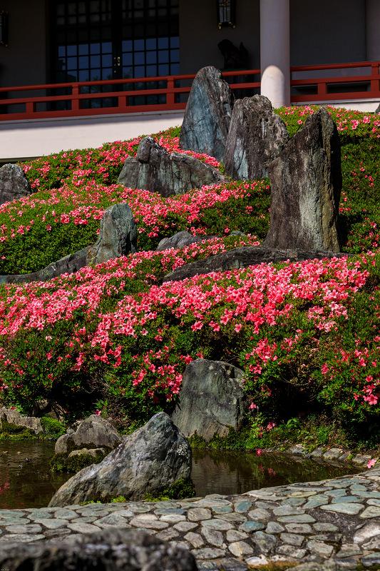 サツキ咲く曲水の庭(松尾大社)_f0155048_093915.jpg