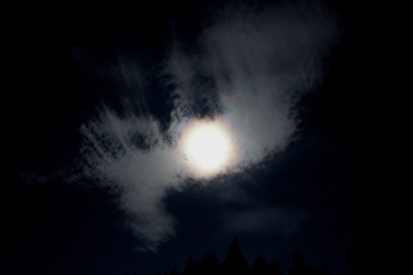 お月様七変化 Ⅱ_a0174458_06032677.jpg