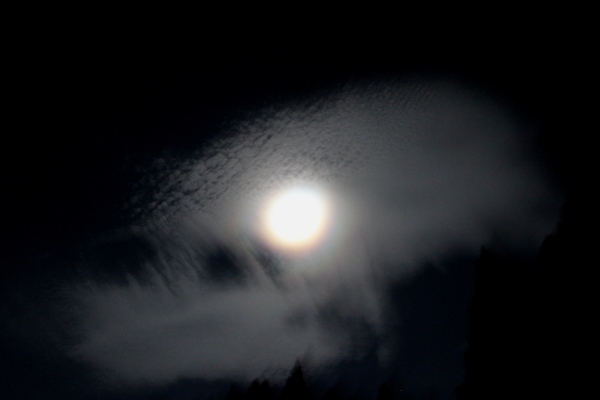 お月様七変化 Ⅱ_a0174458_06072024.jpg