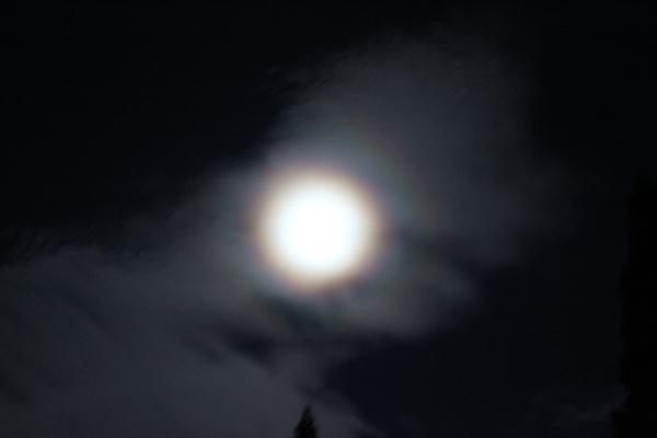 お月様七変化 Ⅱ_a0174458_06074798.jpg