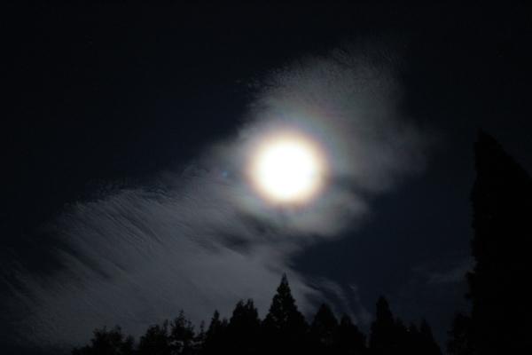 お月様七変化 Ⅱ_a0174458_06102721.jpg