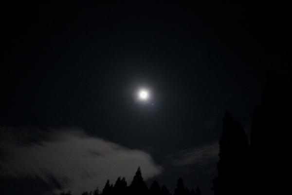 お月様七変化 Ⅱ_a0174458_06122366.jpg