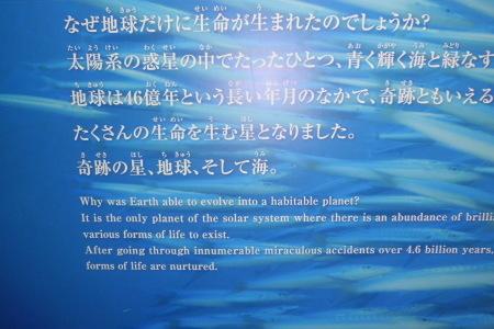 奇跡の★ 地球_e0096277_08501771.jpg