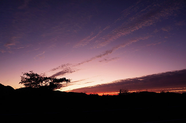 秋の夕暮れ_d0321904_21323602.jpg