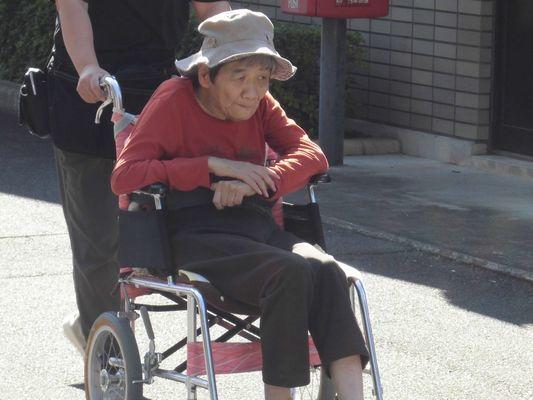 9/16 朝の散歩_a0154110_08200227.jpg