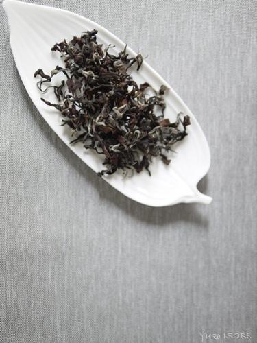 茶殻の美しさ_a0169924_20555434.jpg