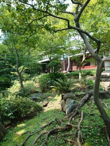 「旧朝倉家住宅」見学_a0147436_14125976.jpg